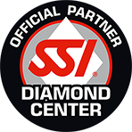 SSI LOGO Diamond Award RGB