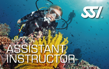 Assistent Instructeur